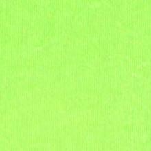 ELLE ERRE verde pisello, 220гр., 70/100, №110