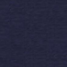INGRES bleu, 160гр., 70/100