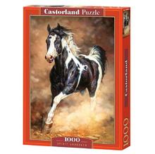 Пъзел Castorland, Несломим дух, 1000 части