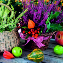 Салфетки Ambiente, Heather Baskets FSC Mix, 13310470